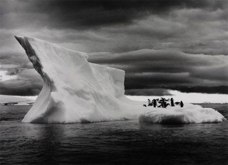 Sebastiao Salgado-Icebergs near Paulet Island, Situated East of the Antarctica Peninsula, from Genesis-2005
