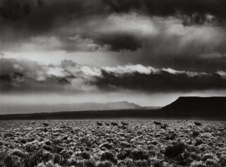 Sebastiao Salgado-Arizona, USA-2010