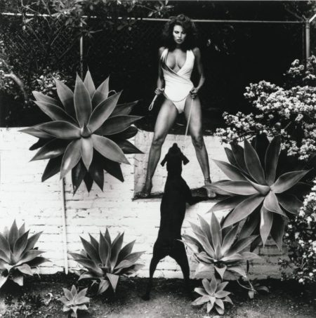 Helmut Newton-Raquel Welch in Her Backyard, Beverly Hills-1980
