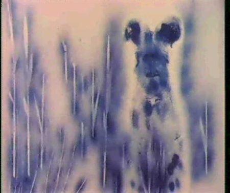 Yves Klein-Cos 43-1960