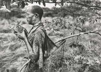 Sebastiao Salgado-Botswana-2008