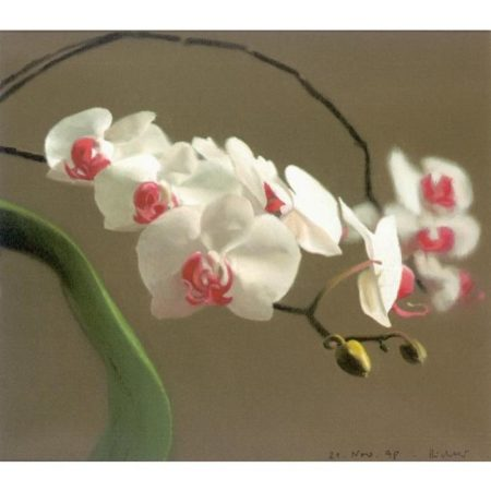 Gerhard Richter-Orchidee I (Orchid I)-1998