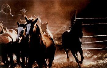 Richard Prince-Cowboys-1984