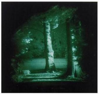 Thomas Ruff-Nacht, Park Haus Lange, Haus Esters-1996