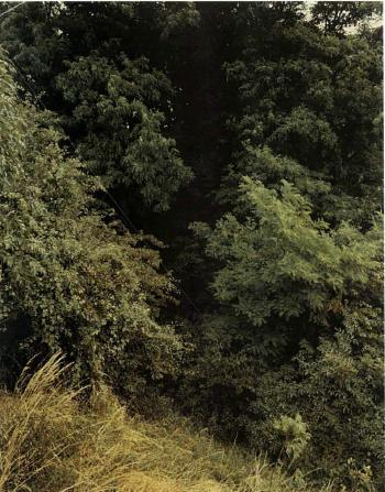 Andreas Gursky-Krefeld-1990