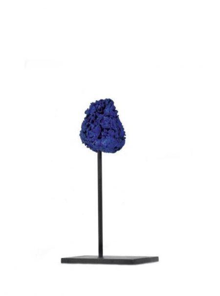 Yves Klein-Eponge bleue-
