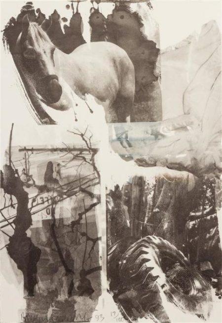 Robert Rauschenberg-Robert Rauschenberg - Horse silk (from Night Sights series)-1993