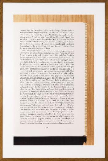 Andreas Gursky-Sans titre XII, No. 4-2000