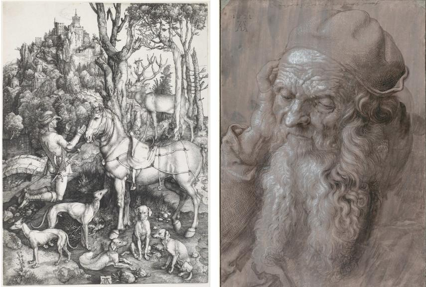 Contact Italy national museum to get info on Dürer's work and life