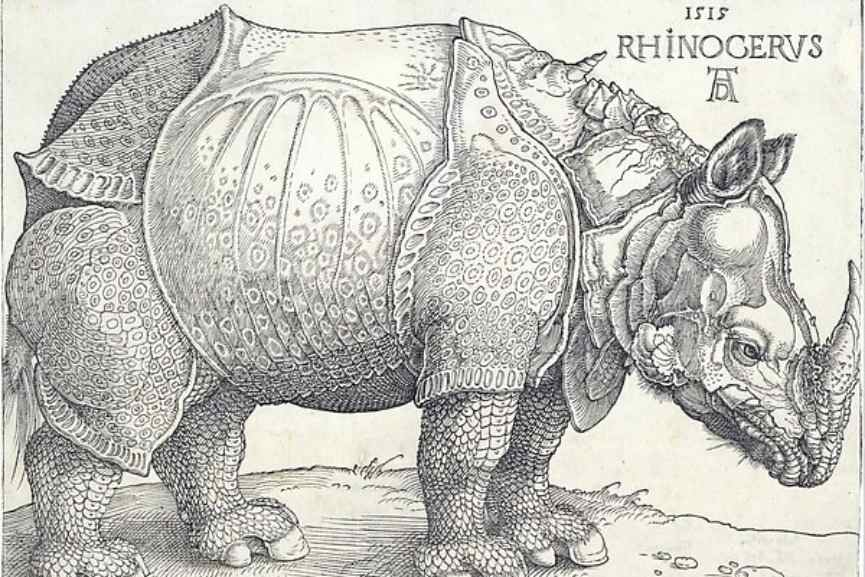 Albrecht Durer – The Rhinoceros, 1515 via metmuseum