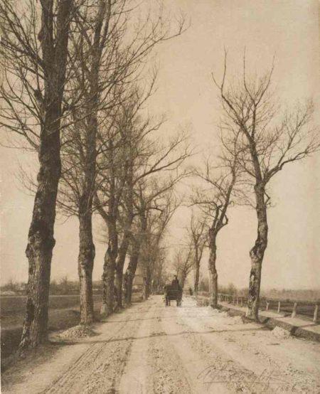 Alfred Stieglitz-November Days-1886