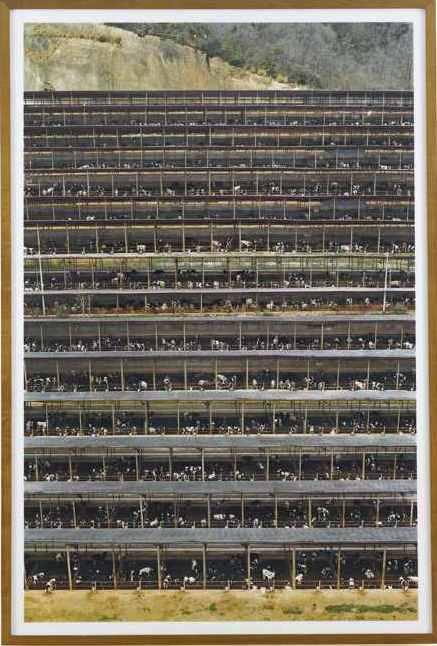 Andreas Gursky-Fukuyama-2004