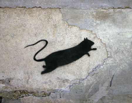 Vertical Gallery Celebrates 4-Year Anniversary with a Showcase of Blek Le Rat Art !