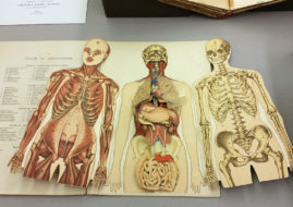 Books on Anatomy for Artists - Anatomy books provide good photos and a great help for you to draw female form