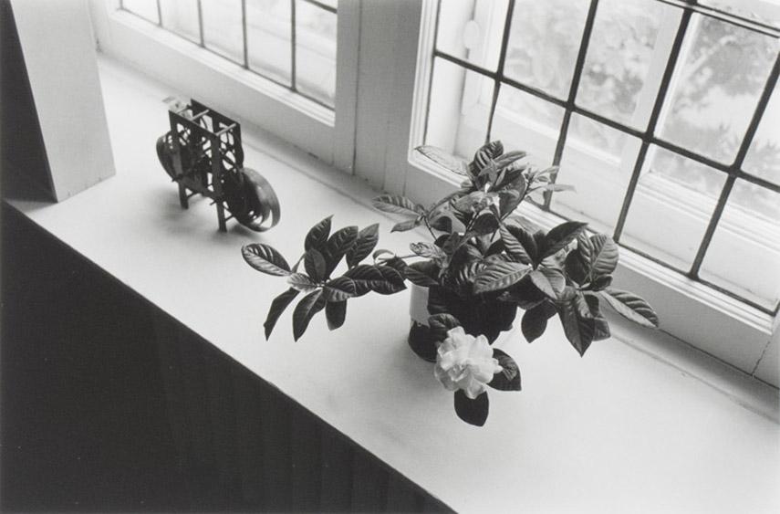 Charles Gagnon - Michiko's Gardenia, Montreal, 1974