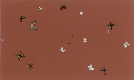 Damien Hirst-A Lovely Day-1998