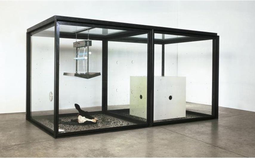 london gallery koons jeff print Damien Hirst