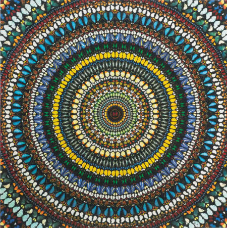Damien Hirst-Covenant-2013