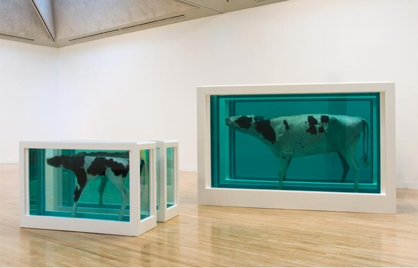 Damien Hirst news paintings tate terms
