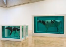 Damien Hirst - Mother and Child (Divided),1993- Image courtesy of the artist