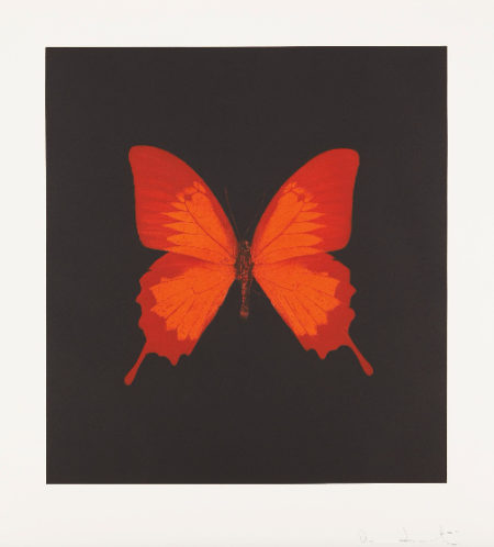 Damien Hirst-The Souls on Jacobs Ladder Take Their Flight: Plate 3-2007
