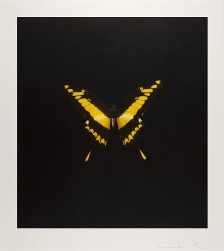 Damien Hirst-The Souls on Jacob's Ladder Take Their Flight: Plate 6 (Yellow/Black)-2008