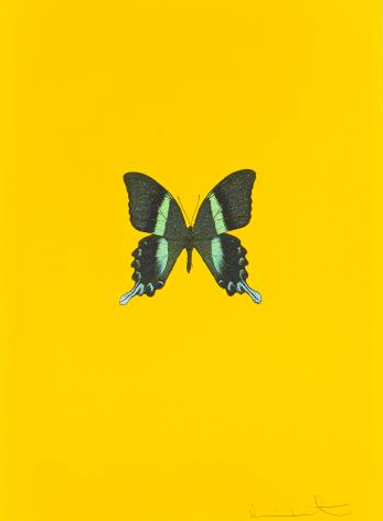 Damien Hirst-Untitled 03 (New Beginnings)-2011
