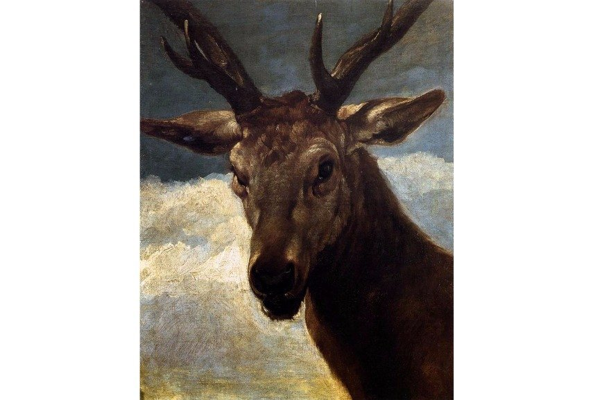 Diego Velázquez – Head of a Stag, 1634
