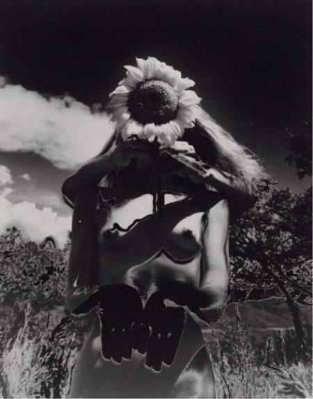 Eikoh Hosoe-Sunflower Song, solarisation-1992