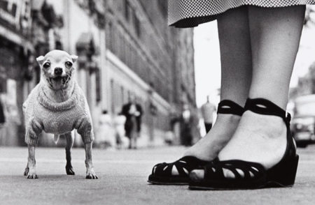 Elliott Erwitt-New York City-1946