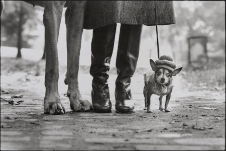 Elliott Erwitt-New York City-1974