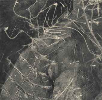 Emmet Gowin-Mining Exploration, Near Silver City, Nevada-1988