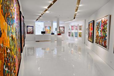 GalerieDavidPluskwa1