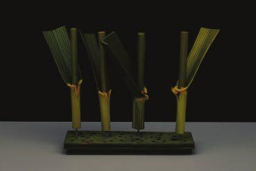 Hans Hansen - o.T. (Plant Models), 2007