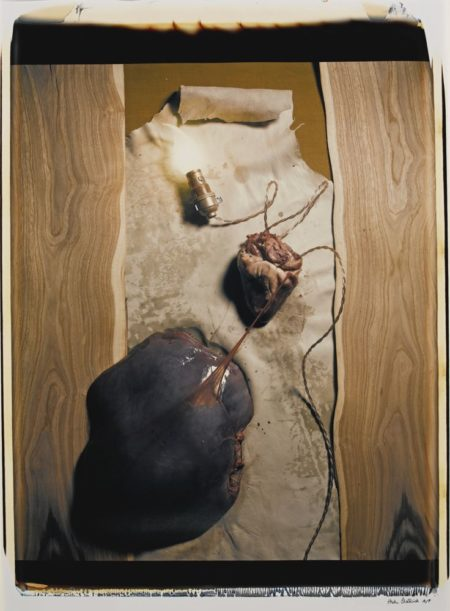 Helen Chadwick-Meat Abstract No. 5 Heart Of Liver-1989