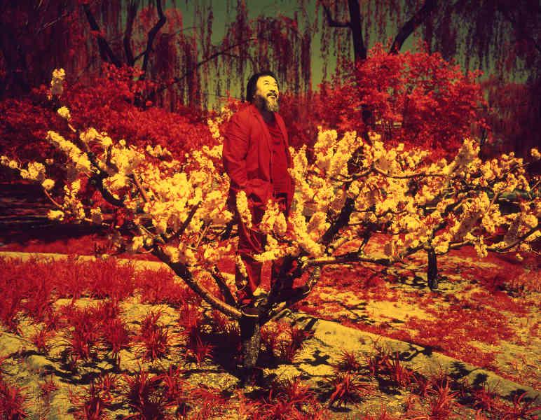 jacob appelbaum exhibition