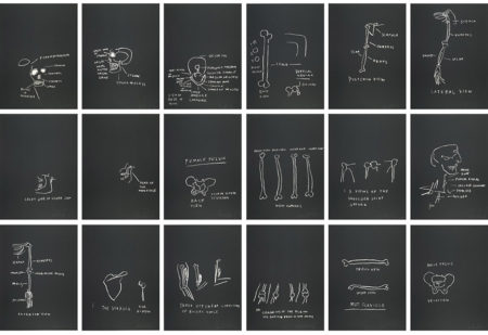 Jean-Michel Basquiat-Anatomy (Full Set)-1982
