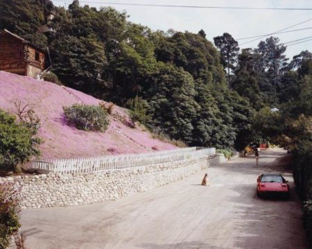 Joel Sternfeld-Rustic Canyon, Santa Monica, California, May-1979