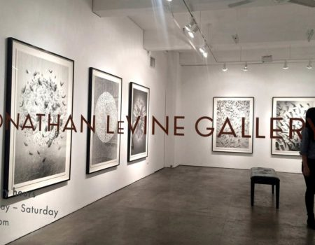 JONATHAN LEVINE GALLERY New York