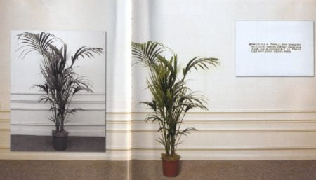 Joseph Kosuth-One and Three Plants-1965