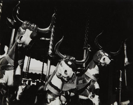 Lee Miller-Carousel Cows-1930