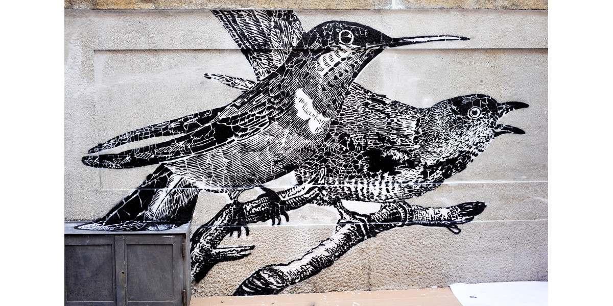 Lucamaleonte x ROA – Murals for Lecco Street View, 2013, photo credits - Il Gorgo