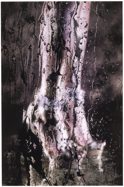 Marilyn Minter-Liquid Sky-2010