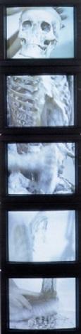 Marina Abramovic-Cleaning the Mirror I-1995