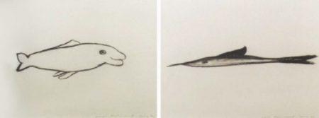 Marina Abramovic-Dolphin-1989