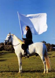 Marina Abramovic-The Hero-2001