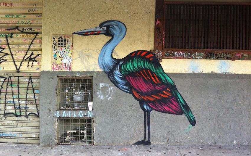 Mateus Bailon - São Paulo, Brazil