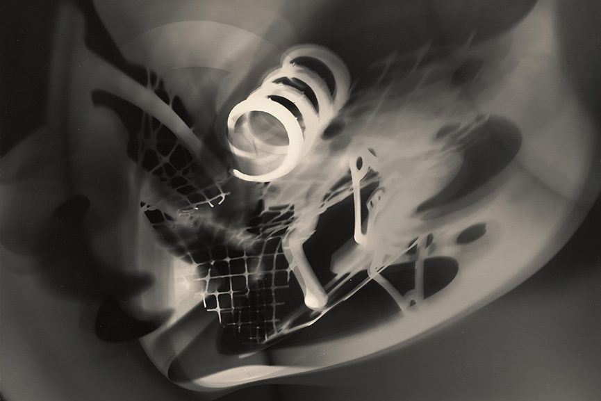 photogram artists photograms untitled print