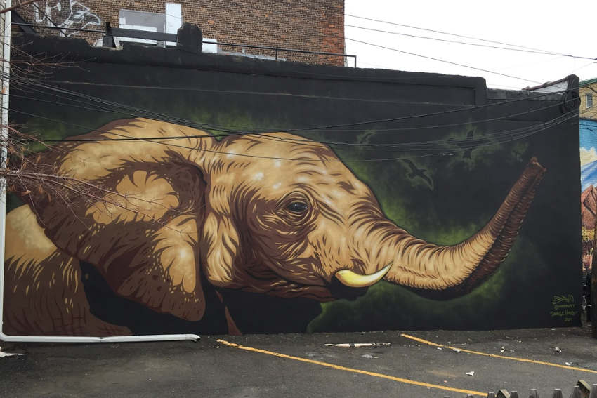 mr prvrt elephant mural for savage habbit jersey city