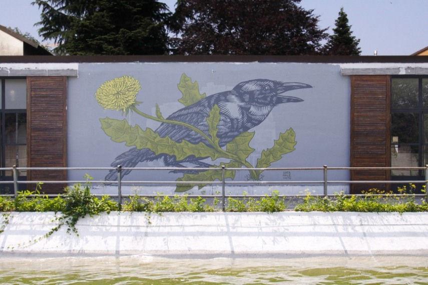 Grauen Studio, Monza